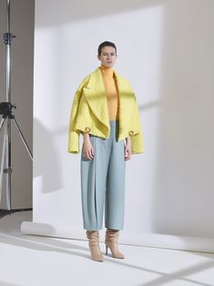 The complete Erika Cavallini Pre-Fall 2018 fashion show now on Vogue Runway.