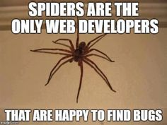 happy to find bugs Physics Memes, Science Memes, Spider Quotes, Funny Images, Funny Pictures, Funny Pics, Programming Humor, Geek Humor