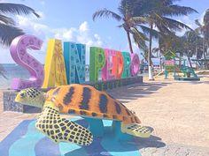 San, Vacation, Beautiful, Poppies, Vacations, Holidays Music, Holidays