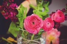 Kvetinová škola❤️ www.galériakvetín.sk