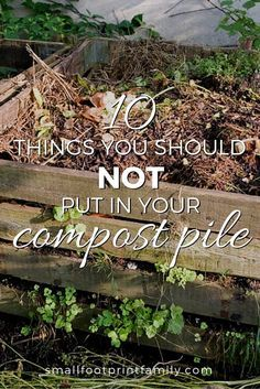 While technically you can compost anything that was once living, for better compost and less hassle, here are 10 things you should not put in your compost pile.