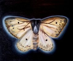 24x30 cm oil on canvas 01/03/2014