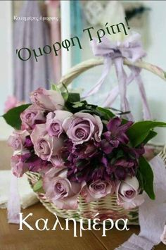 pink and purple roses in a basket Ana Rosa My Flower, Pretty Flowers, Rose Violette, Deco Nature, Deco Floral, Rose Cottage, Lavender Cottage, All Things Purple, Flower Basket