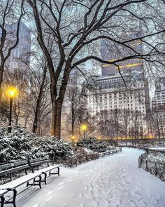 65 Ideas For Winter Landscape City Central Park New York Christmas, Winter Scenery, Snow Scenes, Winter Pictures, Winter Beauty, Winter Photography, Photography Sky, New York Photography, Travel Photography