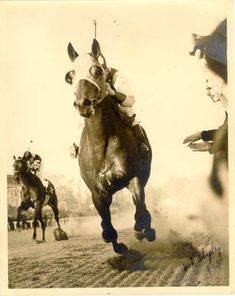 ~Seabiscuit~ 5.23.33 – 5.17.49. The bay colt grew up on Claiborne Farm in Paris, KY. Man o' War is the grandsire of Seabiscuit. Champion Thoroughbred racehorse. As a result of his races that year and the victory over War Admiral, Seabiscuit was named American Horse of the Year for 1938. A statue of Seabiscuit was installed at Santa Anita Racetrack. His burial site on the family ranch (California) is known only to the Howard family.
