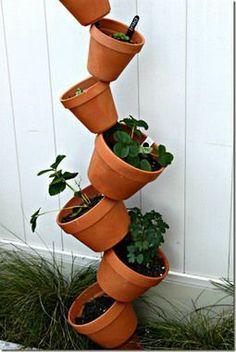 Green Decor: Vertical Garden Ideas
