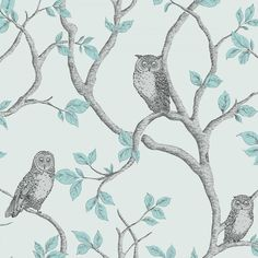 Fine Decor Woodland Owls Wallpaper Teal / Grey (FD40638)