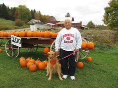 .my 2 pumpkins  in the pumpkin patch