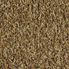 Stainmaster  Color Group: Taupes/Browns  Style: Frieze  Color Treatment: Multi  Structure: Loose  Sheen: Low