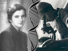 Rosalind Elsie Franklin (25 July 1920 – 16 April 1958)[1] was an English chemist and X-ray crystallographer who made contributions to the understanding of the molecular structures of DNA (deoxyribonucleic acid), RNA (ribonucleic acid), viruses, coal, and graphite.[2] Although her works on coal and viruses were appreciated in her lifetime, her contributions to the discovery of DNA were largely recognized posthumously.