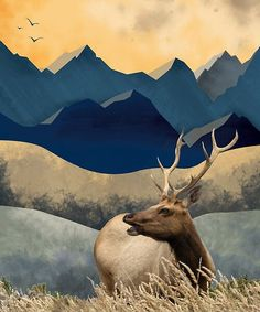 Majestic stag set in a colourful painted mountain landscape. Mountain Landscape, Top Artists, Wall Hangings, Landscape Paintings, My Design, Moose Art, Digital Art, Collage, Journey