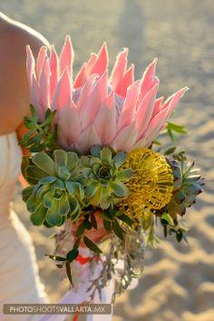 protea king & succulents bouquet for erin!