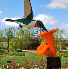 Nature Connects, Art with LEGO® Bricks   Denver Zoo - Amazing!!!