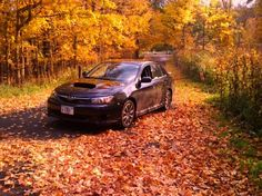 Best time of year for driving    -Photo by Daniel Ford Streble