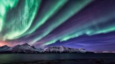 Spectacular views of the aurora borealis in our Night Sky. From Djupvik, Kåfjord, Norway by Tor-Ivar Næss