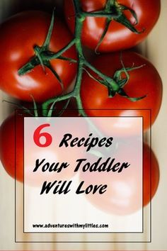 6 Recipes Your Toddler Will Love-Food