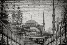reflection-photography-30