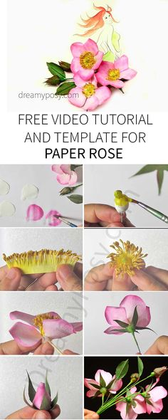 Paper rose free template and tutorial, made from coffee filter.