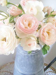 Secret Garden Cottage Blog♥  So Delicate..............