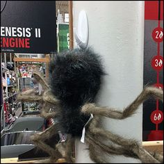 Halloween Spider Command Strip Anchor – Fixtures Close Up Command Strips, Halloween Spider, Anchor, Insects, Retail, Anchor Bolt, Anchors, Sleeve, Retail Merchandising