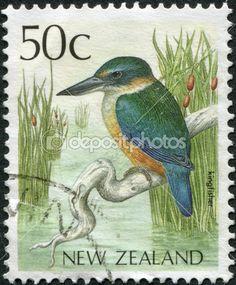 Nouvelle Zélande - circa 1988 : timbres imprimés en Nouvelle Zélande, montre un Martin-pêcheur d'oiseau, vers 1988