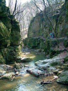 Lovely you and giveyou the best Where Do I Go, Cambodia Travel, Budapest Hungary, Places To See, Travel Destinations, Waterfall, Scenery, Trekking, Adventure