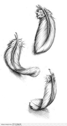 falling feathers to bring my two tattoos together