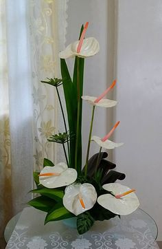 My arrangement of white Anthuriums. Basket Flower Arrangements, Creative Flower Arrangements, Tropical Floral Arrangements, Flower Arrangement Designs, Ikebana Flower Arrangement, Beautiful Flower Arrangements, Beautiful Flowers, Tropical Flowers, Exotic Flowers