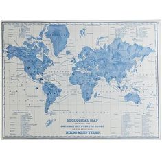 49 best map images on pinterest world maps 3d presentation and the world is blue and whiteat least in our view hand painted cool wall artmap gumiabroncs Gallery