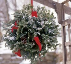 As you're decorating the inside of your home this holiday season, don't forget to spruce up the outside. Along with the traditional lights and bows that brighten up your home's exterior, try incorporating a bit of the garden with this homemade evergreen ball.