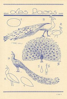 les animaux 89 by pilllpat (agence eureka), via Flickr