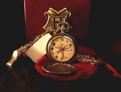 Dumbledore's pocket watch. This watch is just spectacular... if I had the money, I would have bought it when I still had the chance. It has 12 HANDS!