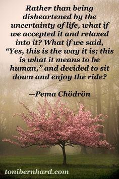 pema chodron quotes - Google Search