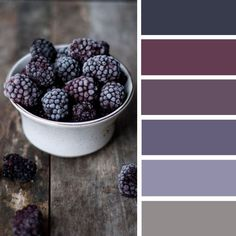 100 Color Inspiration Schemes : Blackberry Color Palette #color #colorpalette