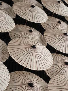 Parasols // Photo by Jackson Carson   I love this on several levels - it's an awesome bit of photography. I like the simplicity and the Asian feel.  Nice.