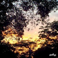 Rare sunrise in city park   Taman Suropati, Jakarta