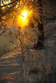 ☀ Winter sunrise ~ Photo by marzaxx Beautiful World, Beautiful Places, Beautiful Pictures, Winter Love, Winter Scenery, Winter Sunset, Winter Magic, Winter Photos, Winter Beauty
