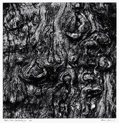 Aaron Siskind, Apple Tree (Millerton), 1971