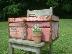 For the handy girl....old pink tool chest