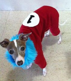 Thing 1 and Thing 2 Costume Dog Pajamas by NakedDogPJs on Etsy