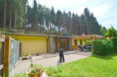 Ferienhaus mit Hund im Harz