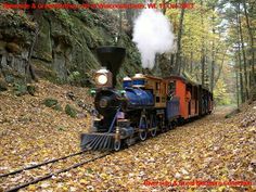 Train Car, Train Rides, Live Steam Locomotive, Garden Railings, Steamers, Ride On Toys, Thomas And Friends, Model Trains, Kara
