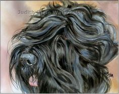 Black Russian Terrier Dog Art Print of Watercolor Painting Judith Stein Signed Painting Prints, Watercolor Paintings, Art Prints, Dog Enrichment, Black Russian Terrier, Terrier Dogs, Terriers, Artist Bio, Dog Art