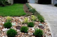 Glamorous Front Yard Landscaping Ideas With Rocks Pics Home Designs Adorable Digital Photography Backyard Garden And Stone Driveway Entrance Columns Also Grass