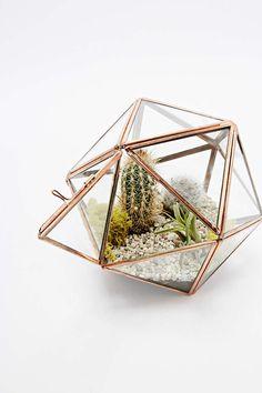 Urban Grow Star Terrarium Planter in Copper - Urban Outfitters