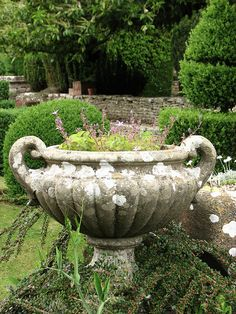 English urn
