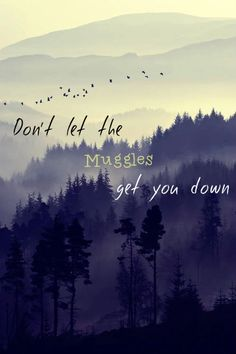 Photo: Don't let the Muggles get you down