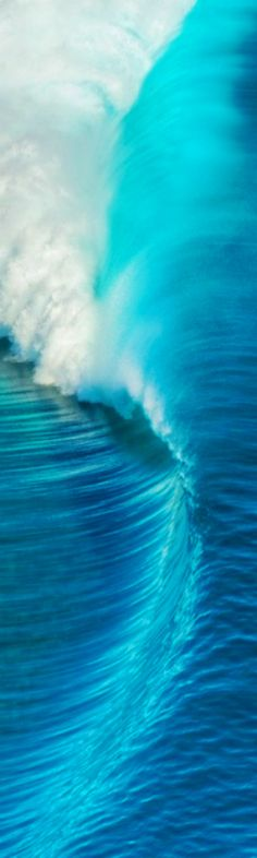 ✨Big Blue Wave
