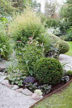 Trädgårdsflow: Augusti