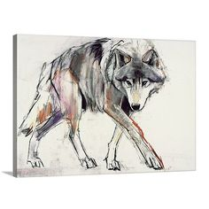 'Wolf' by Mark Adlington Painting Print on Canvas